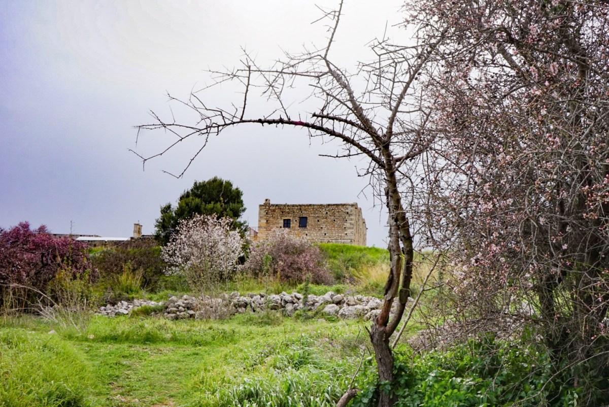 Kreetaa autolla: Apteran muinainen kaupunki ja Apokoronasin alue