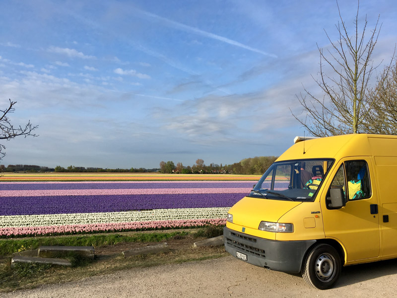 Ducci vor dem Blumenmeer in Holland