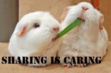 Sharing is caring!