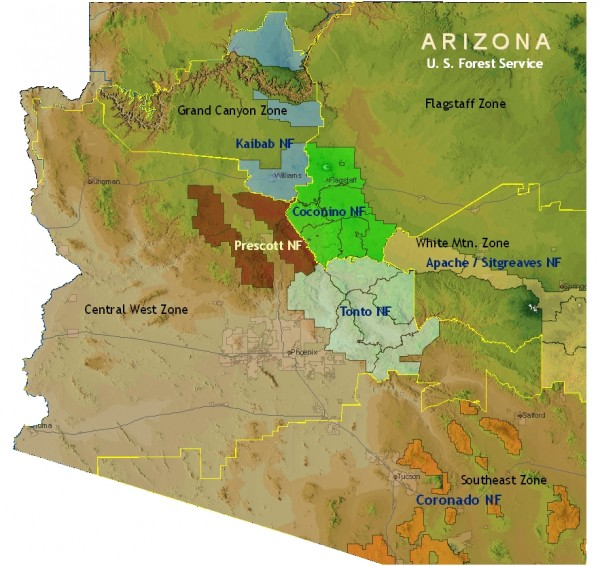 Arizona forests