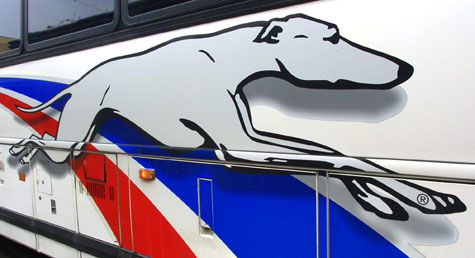 Greyhound Bus Logo