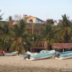 Boats Palm Trees