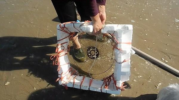 clam fishing screen in china