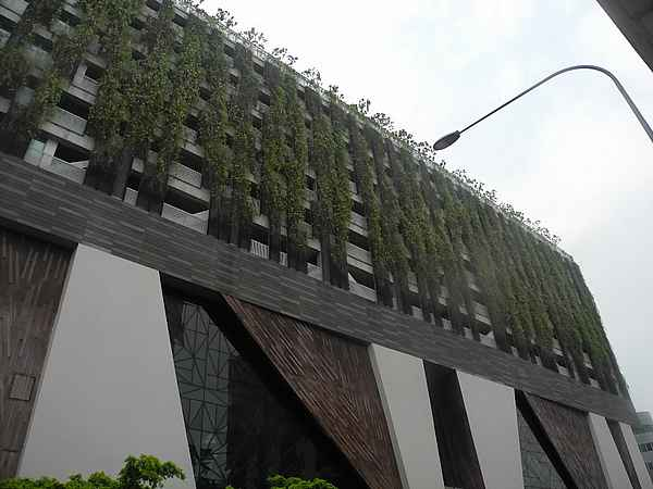 skyrise greenery singapore 8