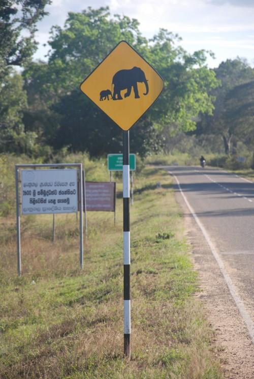 Elephant Sign