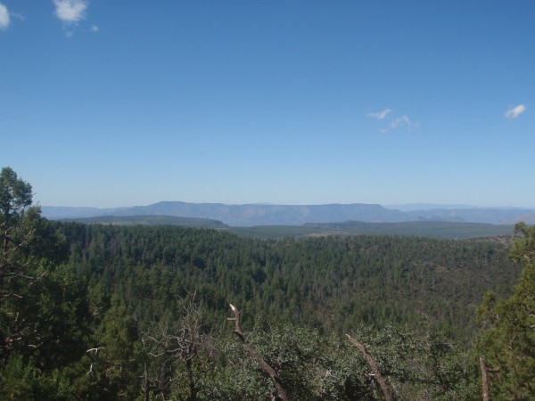Tonto Forest mountains