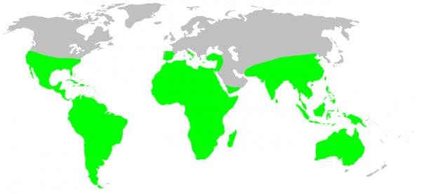 tarantula habitat map