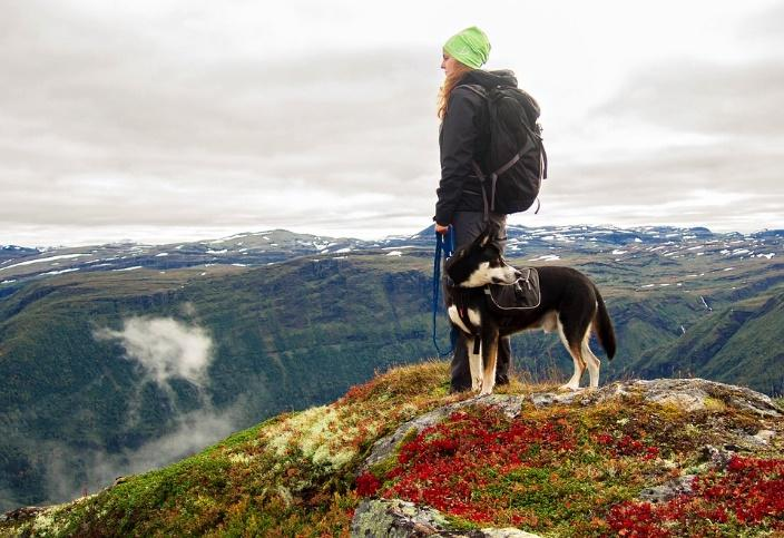 Woman with dog on mountain