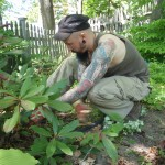 Pulling weeds for travel