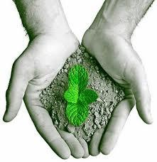 Concurso Secretaria de Meio Ambiente