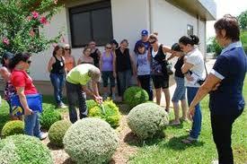 Curso de Jardinagem e Paisagismo