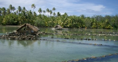 fishponds in Tahiti