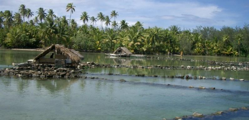Discovering Tahiti  part II