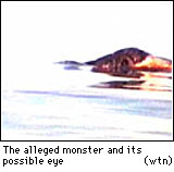 The Lake Van Creature