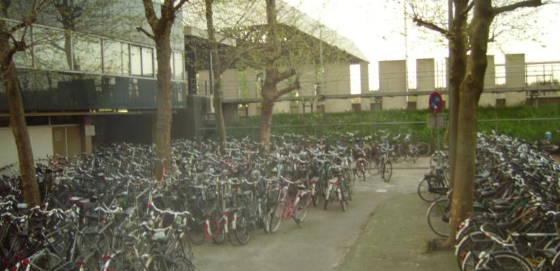 Bicycles in Rotterdam – Have You Been Here?