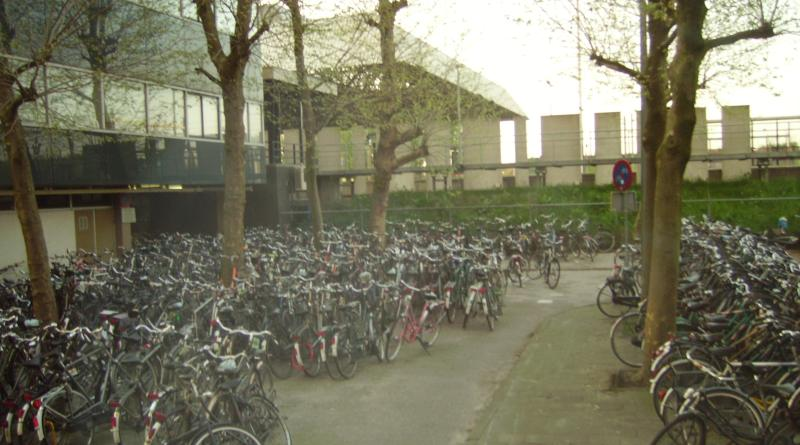 Rotterdam bicycles