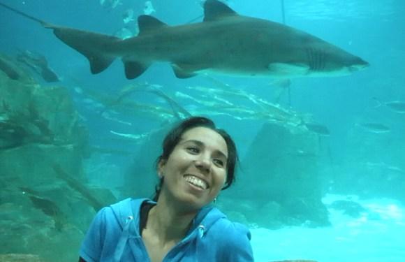 Fishtanbul! – A trip to the Istanbul Aquarium