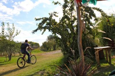 Argentine Bike and Wine Tour