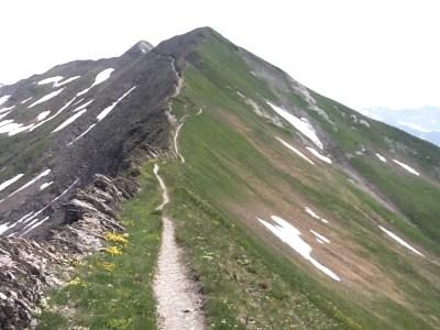 Alps Vagabond hiking