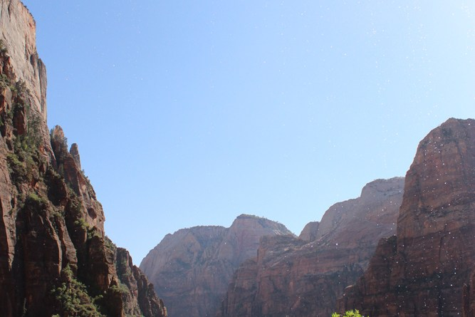 Zion Canyons