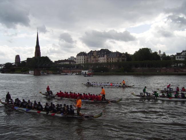 Frankfurt Dragonboats