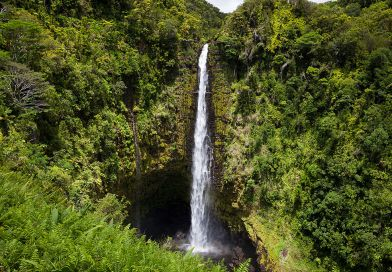 Hilo, Hawai'i – Akaka Falls and the Hamakua Coast