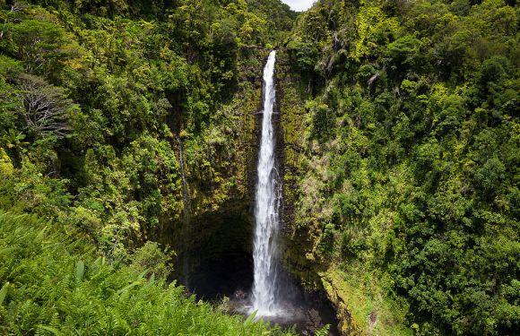 Hilo, Hawai'i – Akaka Falls and the Hamakua Coast