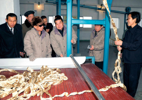Kim Jung-Il visiting the vinalon factory  in Hungnam North Korea