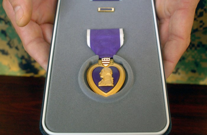 Purple_Heart_case