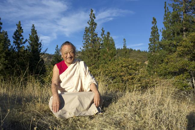 Lama Pema Dorje Rinpoche
