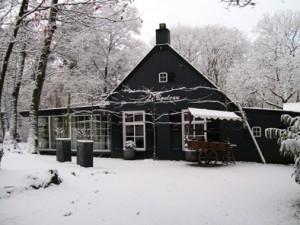 winter-in-B.O.Z.-011web