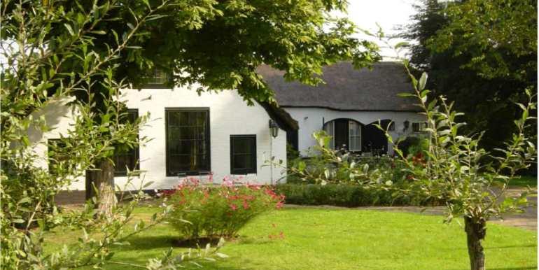 Chestnut-Farmhouse Aarlanderveen