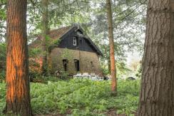 Natuurhuisje in Alphen, Noord-Brabant