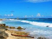Coastline of Aruba