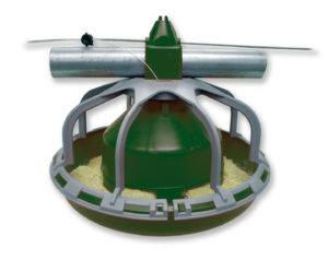 turkey starter feeder