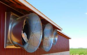 air speed poultry fans