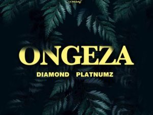 Diamond Platnumz – Ongeza