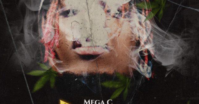 Mega C – Rezler
