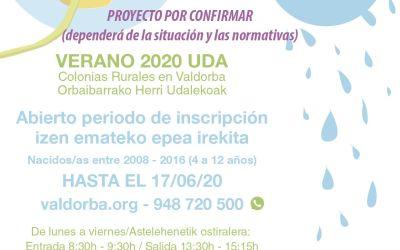 Formulario de evaluación de la demanda de las colonias de Verano 2020