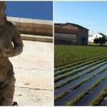 La mar de cerca: rutas turísticas con encanto y sabor valenciano