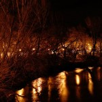Conoce el Turia a la luz de la luna en Riba-roja de Turia