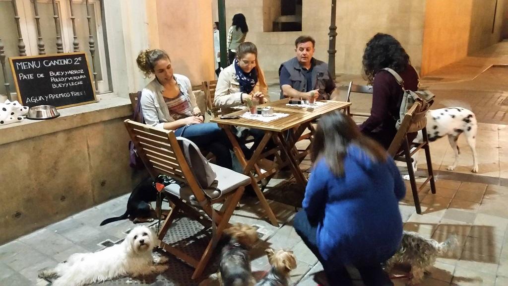 Actividades con animales en Valencia