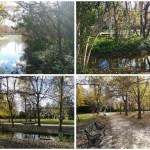 El parque de la Rambleta, la joya de San Marcelino, se amplía con 54 huertos urbanos y 7 tablas de cultivo