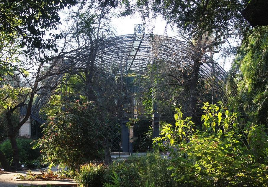 Jornada de puertas abiertas, con visitas guiadas gratuitas, en el Jardín Botánico de Valencia