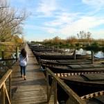 El Puerto de Catarroja: uno de los rincones más bonitos del Parque Natural de la Albufera