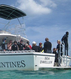 Valentines Dive Center Bahamas For Snorkeling Scuba Diving