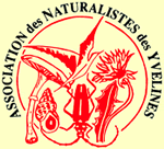 Logo Association des naturalistes des Yvelines
