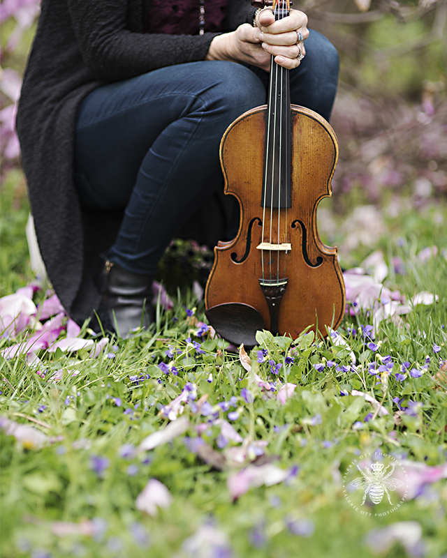 Photo session Irish singer. A violin is surrounded by purple flowers.