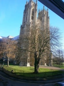 Beverley Minster from the window