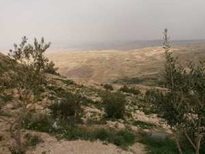 Moses's view of the Promised Land